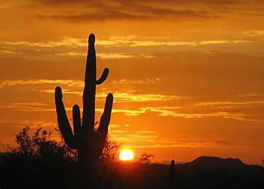el pinacate, mexico, desierto, altar, ANP, reserva, biosfera, Sonora